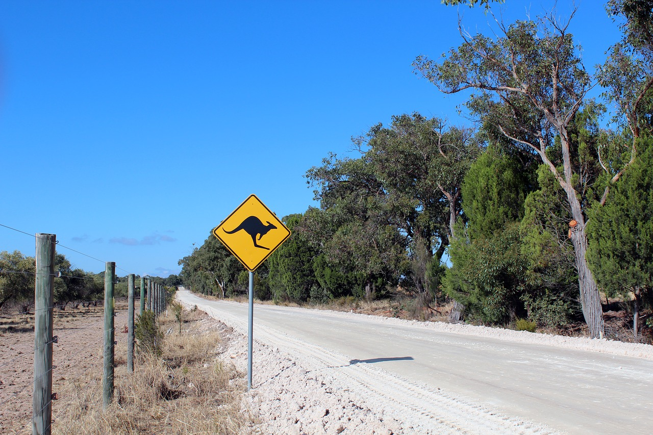 Using ETA To Get Australian Tourist Visa