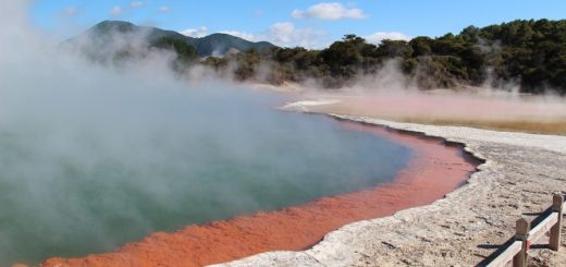 Which Hostels Are Good to Stay in Rotorua?