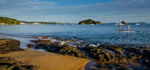 Budget Hostels Near to Beach in Paihia - New Zealand