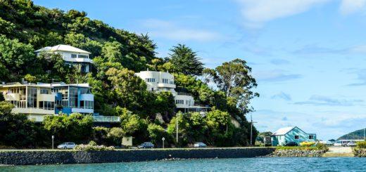Best Hostels to Stay in Dunedin New Zealand